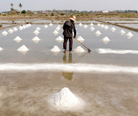 thumb_kampot-salt-fields-2_1024.jpg